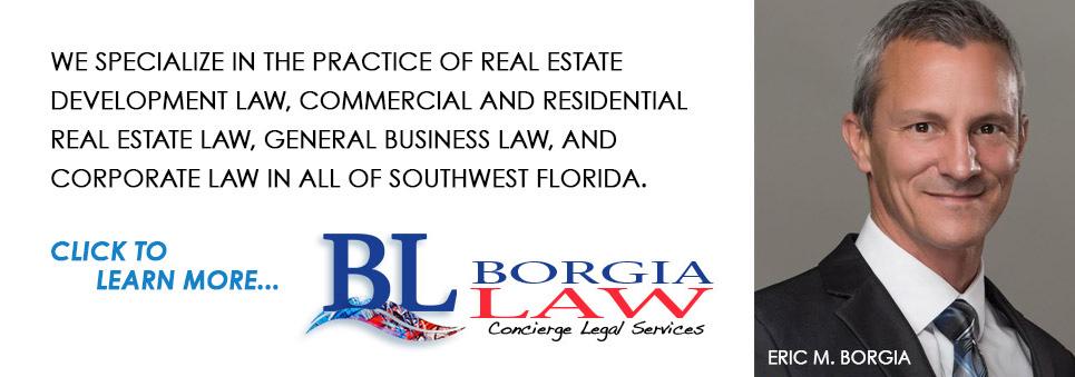 Eric Borgia Law